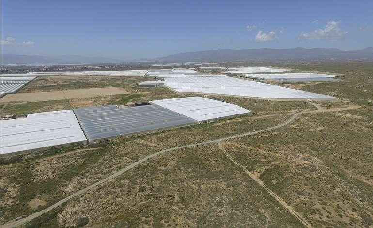 Trabajos de optimización de cultivos de invernadero para incrementar la productividad