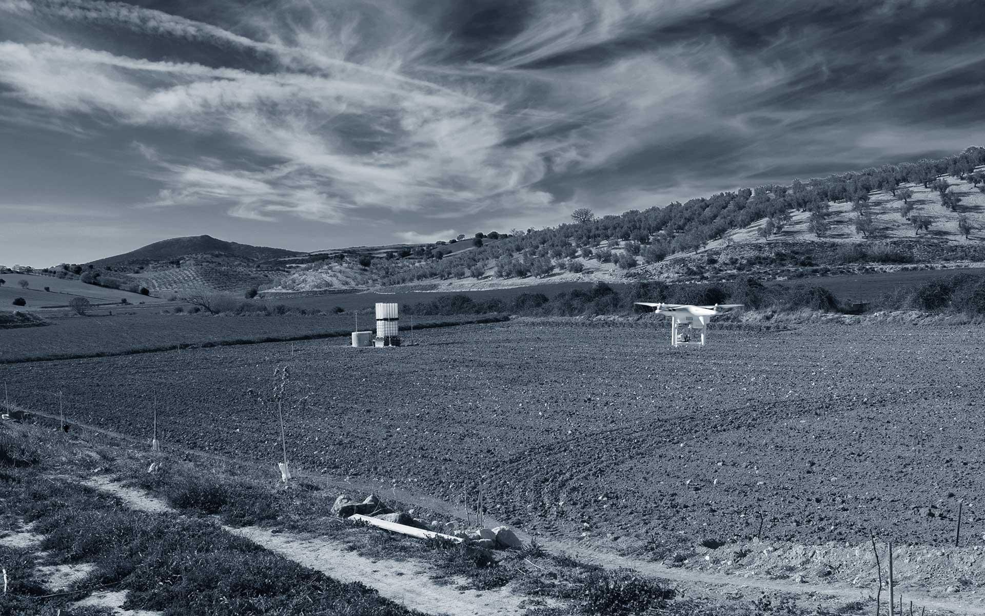 Monitorización de cultivos agrícolas