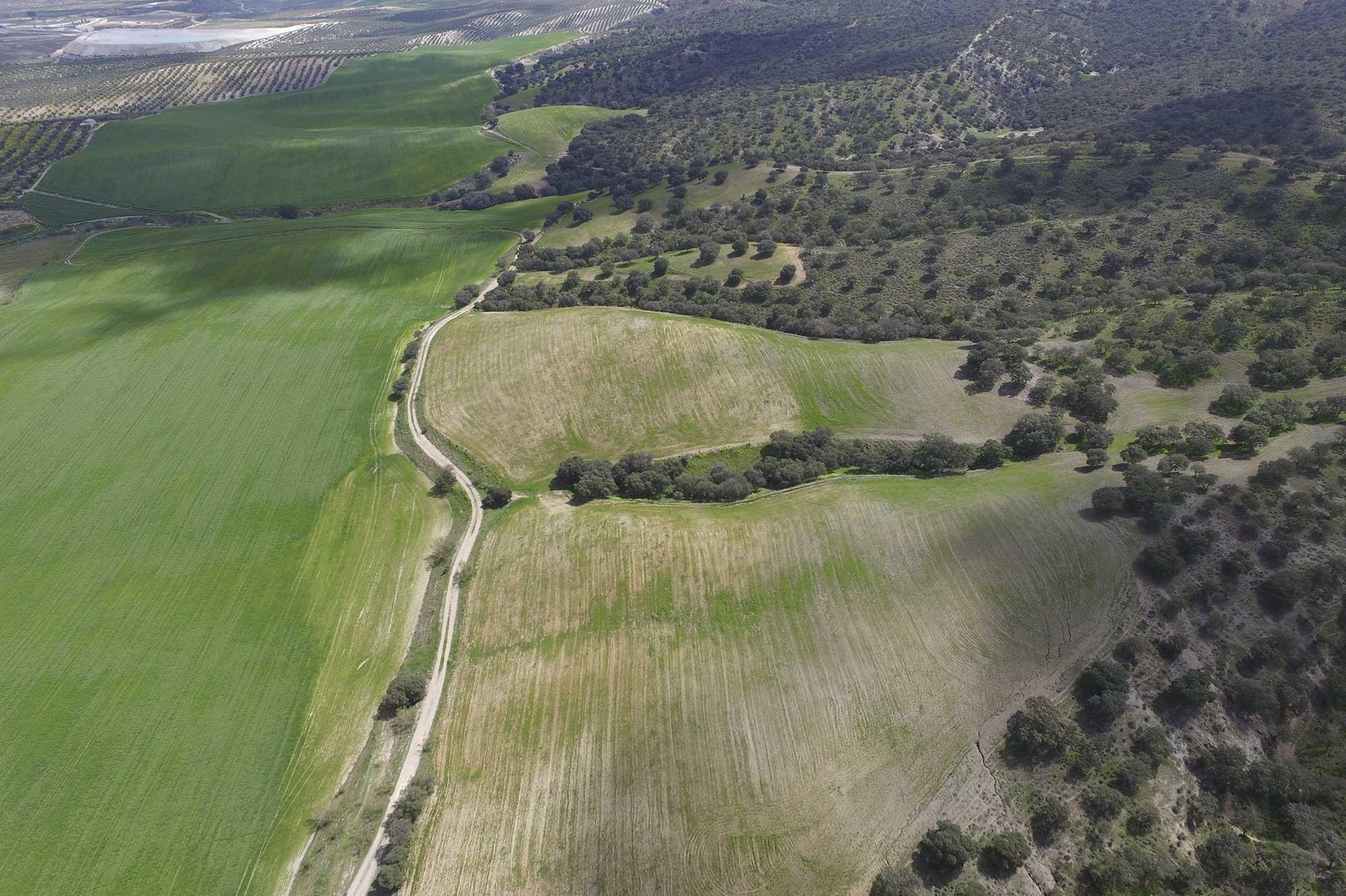 Divulgación del patrimonio ambiental con dron